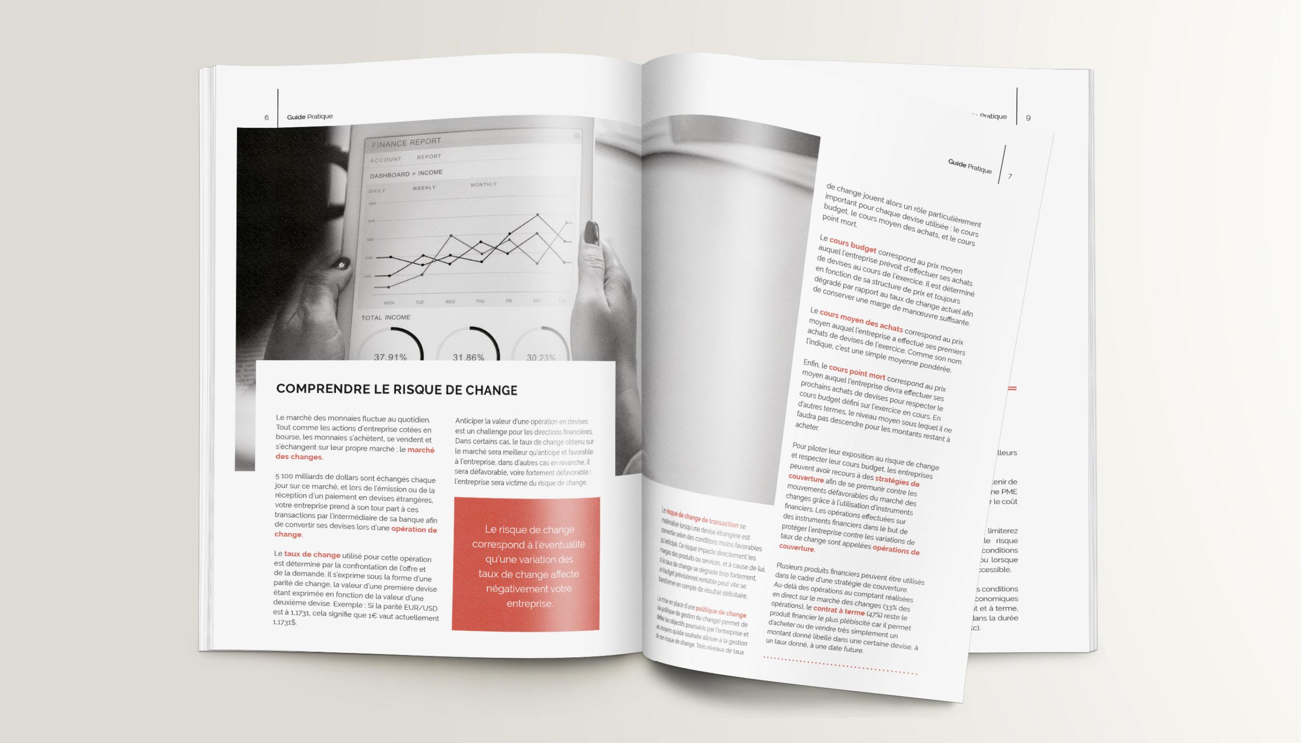 Léa Candat _ Graphiste - Webdesigner _ Nancy _ Projets _ Graphisme _ Livre Blanc _ Yseulis - Ambriva